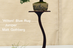 'Wiltoni' Blue Rug Juniper by Matt Gothberg
