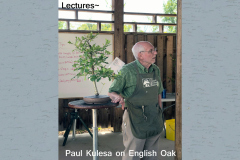 Lecture - Paul Kulesa on English Oak