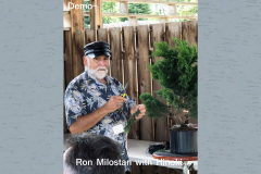 Demo - Ron Milostan with Hinoki
