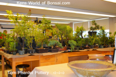 Kens World of Bonsai.com & Tom Phardel Pottery